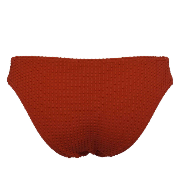 Ani Ani Slips bad Ani Ani red jasper bikini brief brique